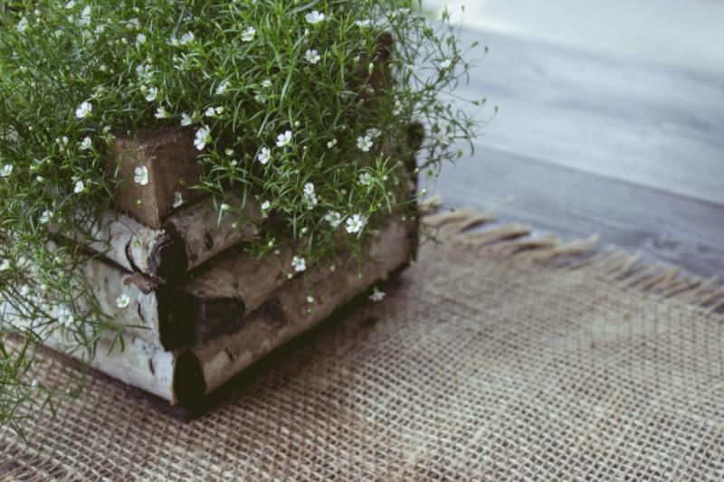 Miglior fioriera in legno: ecco quale scegliere! Guida all