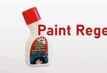 paint regen recensione