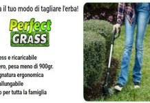 perfect grass recensione